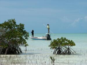 Caribbean - Andros National Park, Bahamas credit BNT
