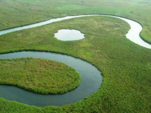 1 Okavango Delta, Botswana - Bastian Bertzky_0