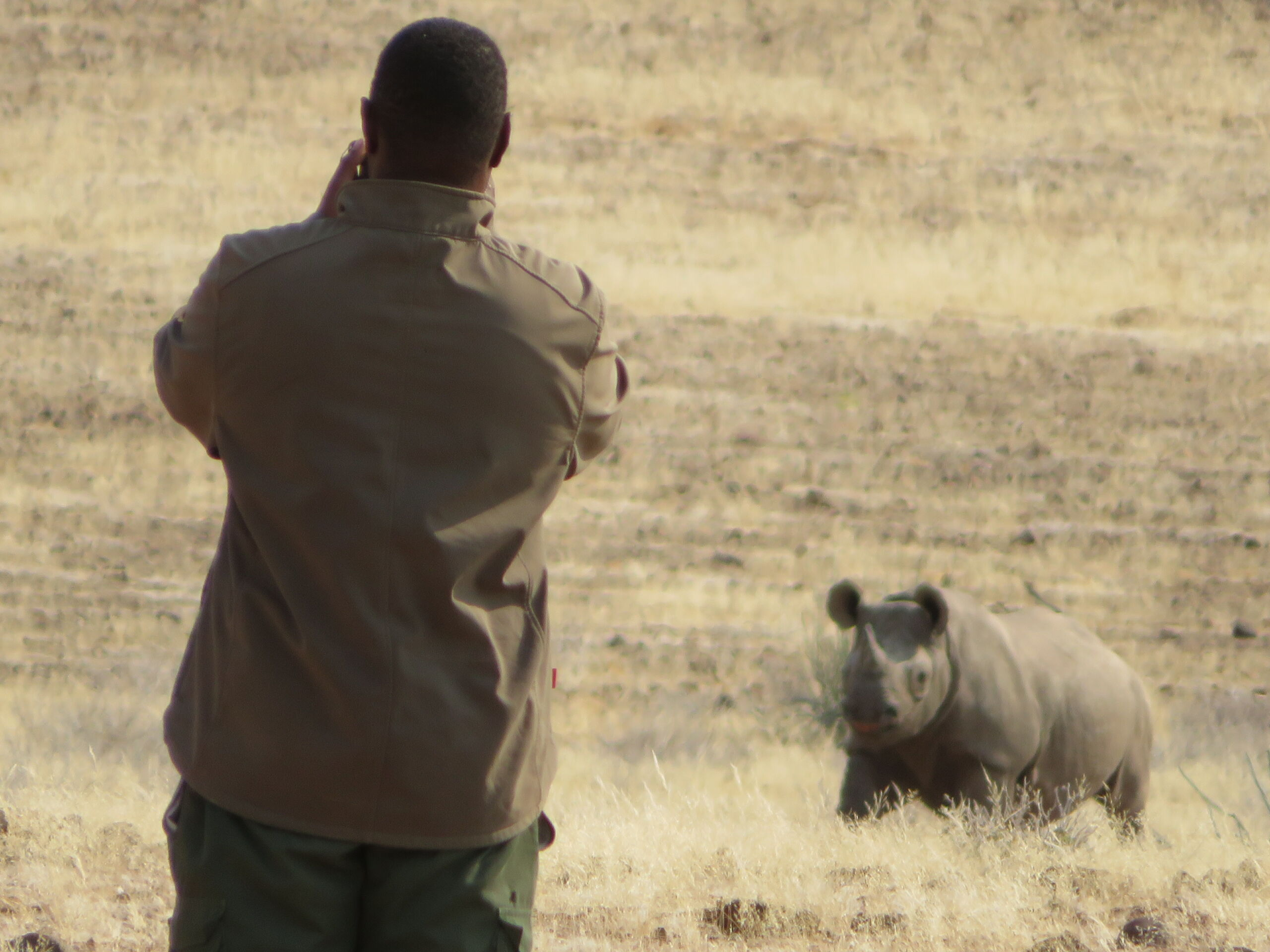 New project to support Namibian communities protecting the world's last free ranging black rhino