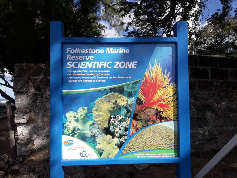 Folkestone Marine Reserve